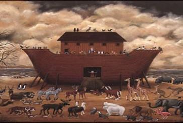 التناقض في عدد ازواج الطيور والبهائم التي أمر الله نوح أن ياخذها معه في الفلك ؟