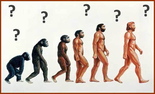 الرد على تطور الانسان من قرد -رداً على تساؤلات ملحد حول التكوين