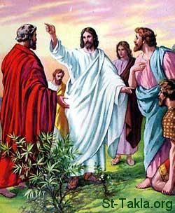 """الأب متى المسكين ,وشرح لاهوتي حول """"أبي أعظم مني"""""""