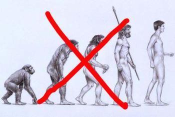 CAJ 2:1 (Spring1999) : Beware Of Evolutionism