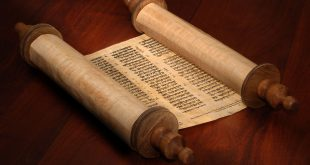If Jesus is really the Messiah, and if he is so important, why doesn't the Torah speak of him at all?