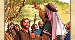 When was the fig tree cursed by Jesus, before or after the temple was cleansed? MATTHEW 21:12–19 (cf. Mark 11:12–14, 20–24)