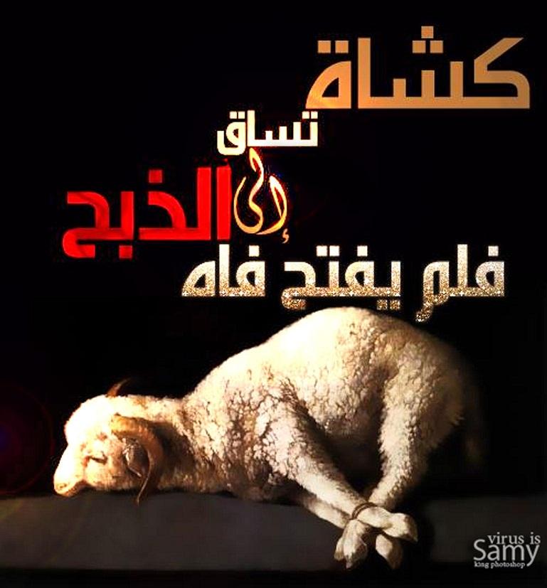 صفات الله فى المسيحية - تشبيه الرب بالحيوانات!