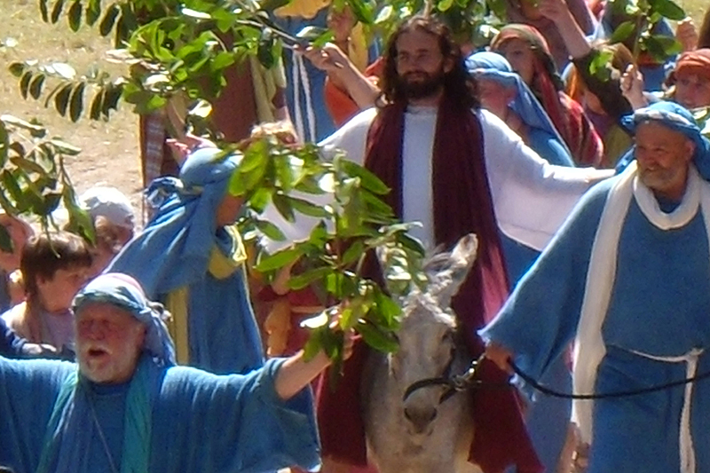 Were there two donkeys involved in the triumphal entry or just one