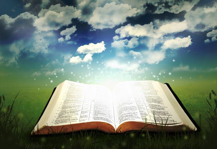 سرّ عدم فهم كلمة الله وإقامة لغة حوار - أيمن فايق