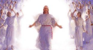 نبوات ورموز في العهد القديم عن قيامة المسيح