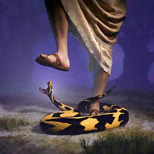 نبوة : من نسل المرأة فقط دون الرجل