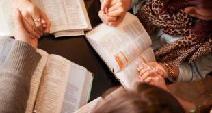 الأزهر يصدر ويوزع كتابًا مجانيًا يصف المسيحية بالديانة الفاشلة!