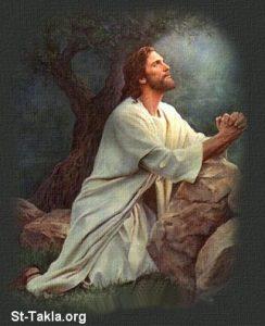 السؤال 52 لماذا لاتسجدون في صلاتكم ، كما كان يصلي المسيح؟