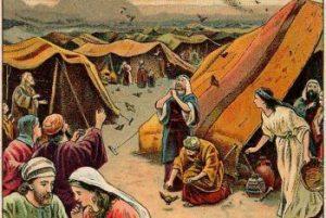 السؤال 44 هل معقول بني إسرائيل ليس فيهم عقيم ولا عاقر ولا في بهائمهم ولا تصيبهم الأمراض؟