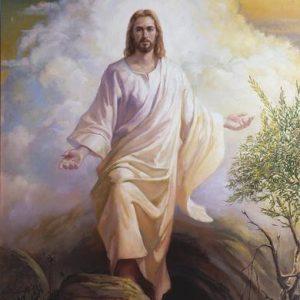 من خفايا الإنجيل محلة اسرائيل وصليب المسيح