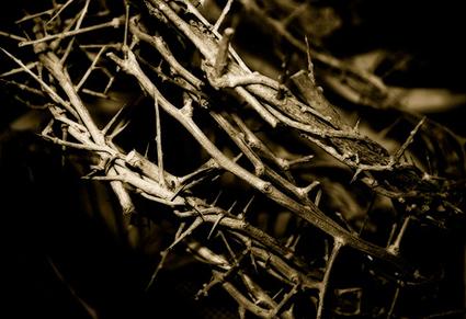 آلام المسيح البيولوجية والنفسية