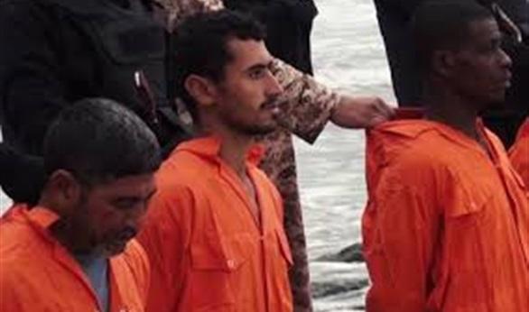 شهداء ليبيا (11)