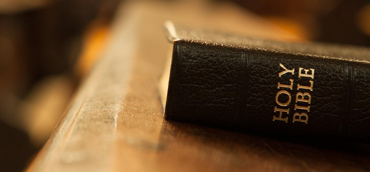 العبادة الأسمى، شهادة أسفار العهد الجديد للمسيح