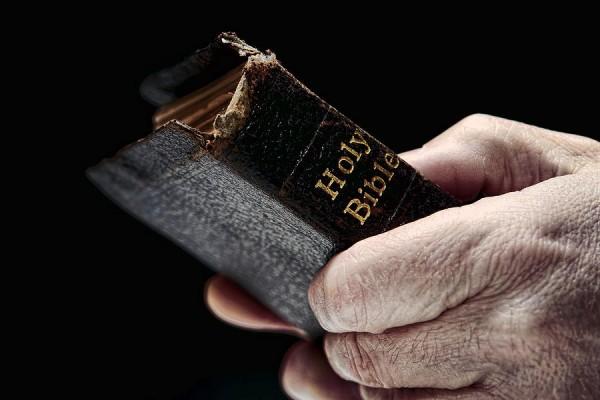 وحدة العهدين من خلال الرسالة إلى العبرانيين