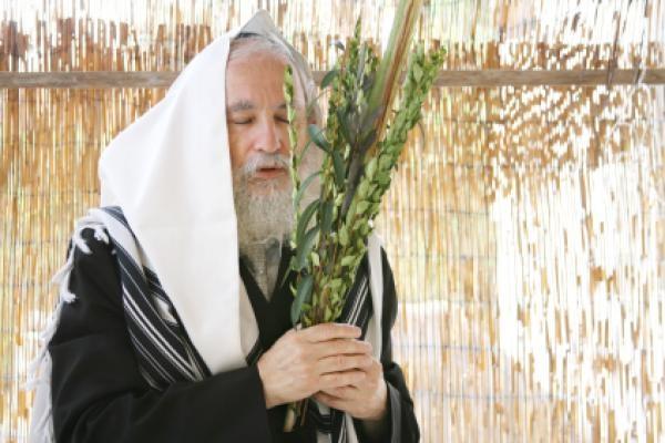 סוכות Sukkot,סוכות, Sukkot, عيد المظال, المظال