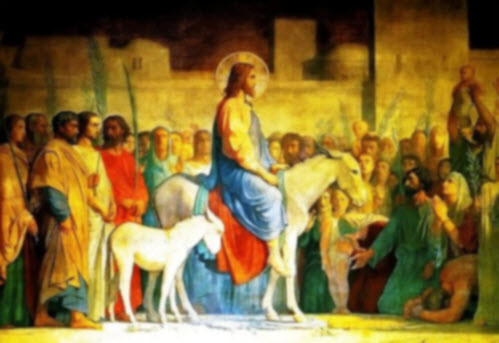 هل سرق التلاميذ باسم يسوع الاتان والجحش ابن اتان
