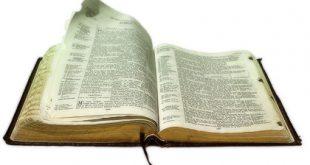 ما هو الفرق بين الأناجيل الأربعة؟ وماذا عن التناقض الموجود بها؟!