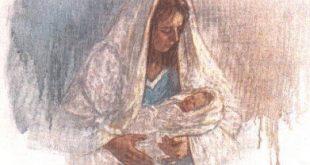 """الابن """" البكر """" (مفهوم prwtotokoV) و الميلاد البتولى لكلمة الله"""