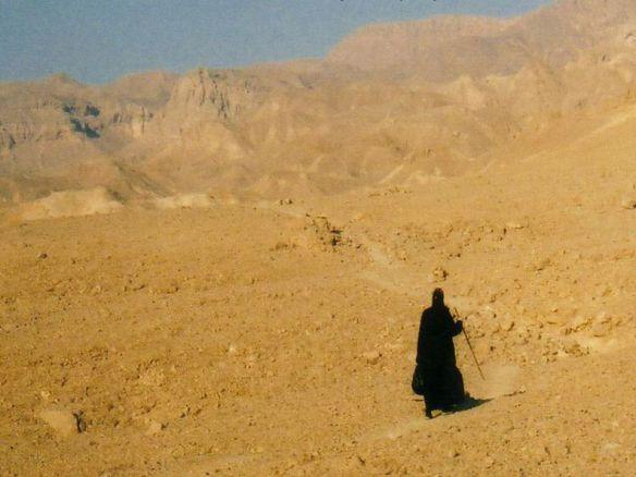 آباء البرية والحياة النسكية (2) - د. سعيد حكيم