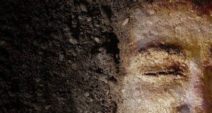 خلق الإنسان على صورة الله ومثالهبحسب فكر القديس كيرلس عمود الدين
