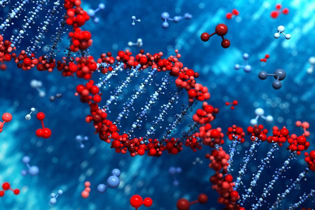 برهان الكيمياء الحيوية - تعقيد الآلات الجزيئية 1 - لي ستروبل
