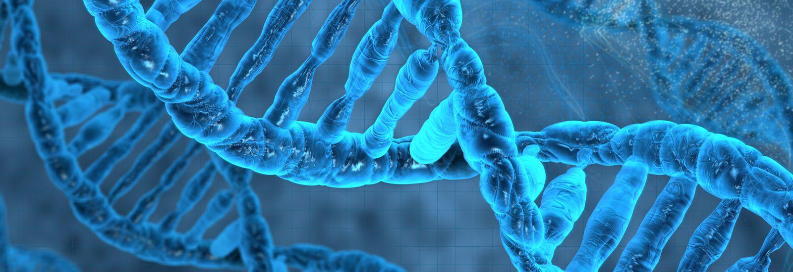 برهان الكيمياء الحيوية - تعقيد الآلات الجزيئية 3 - لي ستروبل