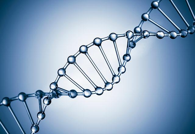 برهان المعلومات الحيوية - تحدي الـ DNA جـ2