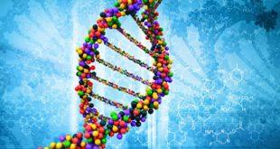 برهان المعلومات الحيوية - تحدي الـ DNA جـ1