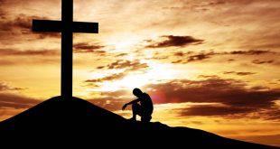 الفداء وموت الموت - أمجد بشارة