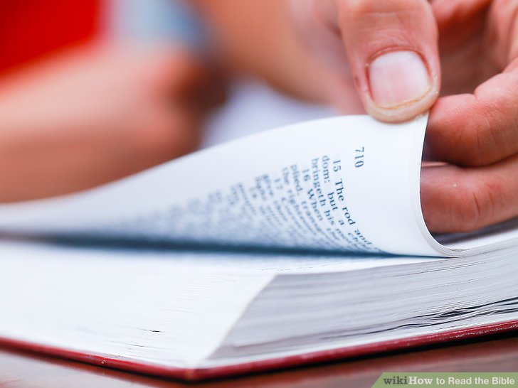 النبوة الكتابية - بحث عملي تدريبي لدراسة الكتاب المقدس