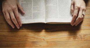 الأمثال - ما هو وما هي أنواعه وكيفية فهمه ؟ - بحث مفصل