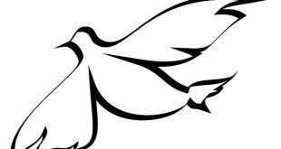 شهادة الروح القدس في التجديد لمصداقية الكتاب المقدس