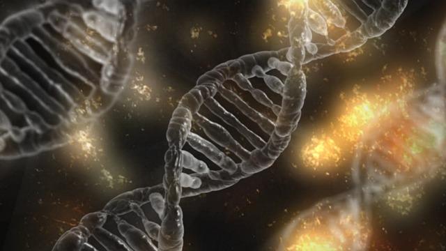 طبيعة التطور ونطاقه - جون ليونكس