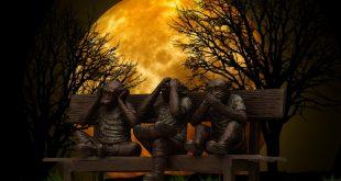 الماكينة القردية - جون ليونكس