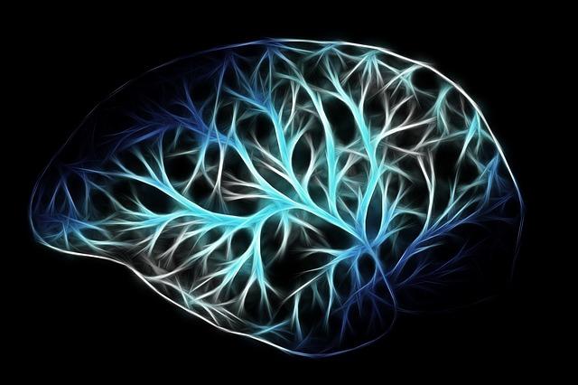 طبيعة العقل البشري - كتاب لغة الله لـ فرانسيس كولينز PDF