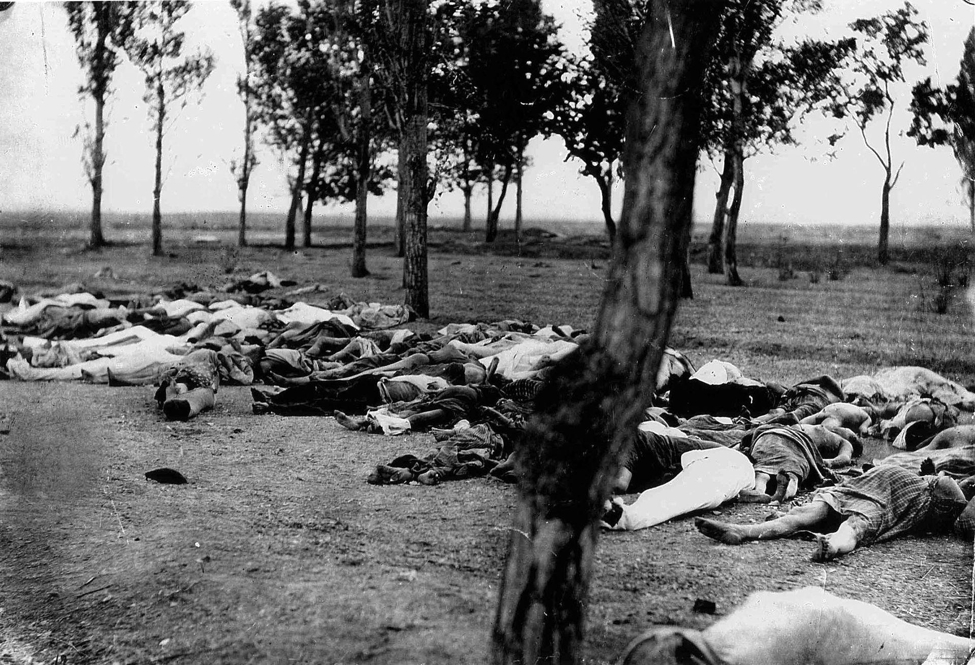 الإبادة الجماعية للأرمن الصورة مأخوذة من قصة السفير مورجينثاو كتبها هنري مورجينثاو الأب ونشرت في عام 1918 (وكيميديا)