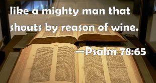 الرد على شبهة فاستيقظ الرب كنائم كجبار معيط من الخمر (مز 78: 65)