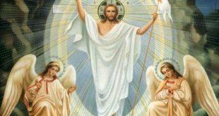 الرد على شبهة تناقضات القيامة: ملاك ام ملاكين رجل ام رجلين! المحقق وارنر والاس (بتصرف)