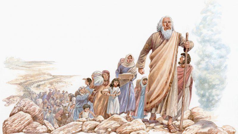 تثنية 1: 13 - هل قام موسى بتعيين القضاة على الشعب أم عيّنهم الشعب نفسه؟