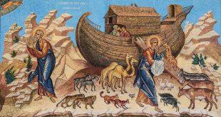 ماذا حدث للحيوانات بعد فلك نوح؟ - ترجمة: رانا رشدي