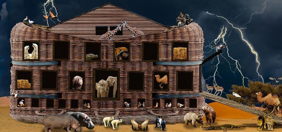 كيف استطاع نوح جمع الحيوانات والاعتناء بهم داخل الفلك - ترجمة ايهاب بطرس