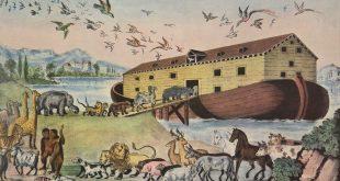 كيف استطاع نوح العناية بالحيوانات؟ ترجمة: فيفيان فايز مينا