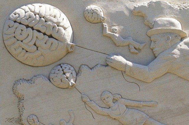 مقدمة عن المخ والعقل - ALL IN ONE